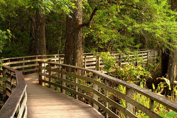 Nature Park in Naples, Florida